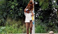 AME8315. TEGUCIGALPA (HONDURAS), 30/09/2020.- Don Carlos camina hoy una larga distancia mientras recoge leña para vender, en las cercanías del crematorio municipal al oeste de Tegucigalpa (Honduras). La crisis desatada por la pandemia de coronavirus en Honduras provocará una caída sin precedentes del PIB del 12 %, engrosará la informalidad y empujará a miles de personas a la pobreza, por lo que el país requiere una estrategia integral que permita apoyar a los más desfavorecidos. EFE/HUMBERTO ESPINOZA