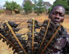 Un hombre vende brochetas de ratón en Malaui para ahuyentar el hambre.
