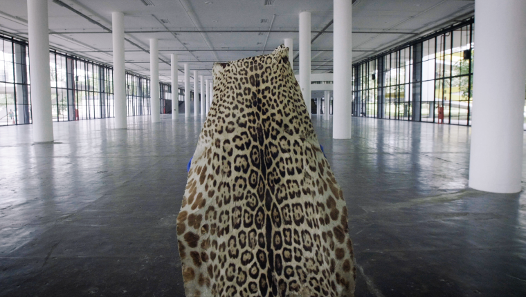 """Escena del vídeo """"Sueño de obsidiana"""" realizado por Edgar Calel en colaboración junto a Fernando Pereira dos Santos (Foto Prensa Libre: Bienal de Berlín)"""