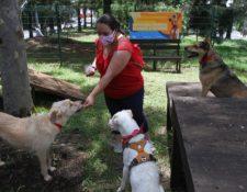 El parque para perros en Mixco fue habilitado este 18 de septiembre. (Foto Prensa Libre: Comuna de Mixco)