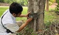Las cámaras que fueron robadas se encontraban instaladas en los arboles al interior del parque Tikal.