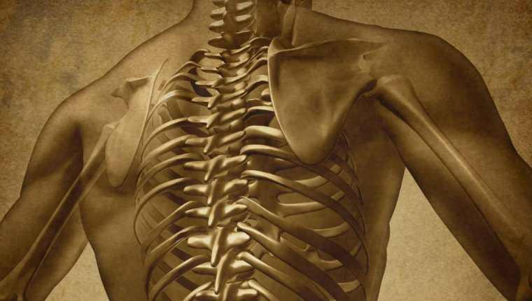 La mielitis es una enfermedad neurológica en la que se inflama la médula espinal. Shutterstock