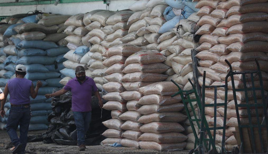 MAGA ajustará controles a transporte de maíz que entra a la capital