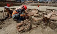 MEX00. ZUMPANGO (MÉXICO), 29/08/2020.- Especialistas del Instituto Nacional de Antropología e Historia (INAH) trabajan el 27 de agosto de 2020 en el sitio donde fueron hallados un número importante de restos de Mamut, en la zona donde se construye el Aeropuerto Felipe Ángeles, en el municipio de Zumpango, en el Estado de México (México). Los casi 200 puntos de hallazgo donde se han encontrado decenas esqueletos de mamuts, camellos, caballos y bisontes, en el futuro aeropuerto de la Ciudad de México, dan cuenta del descubrimiento paleontológico más importante en América Latina por concentración de individuos. EFE/José Méndez
