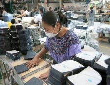 Los salarios mínimos se definen en la actualidad diferenciado en tres actividades económicas., no en forma regional. (Foto, Prensa Libre: Hemeroteca PL).