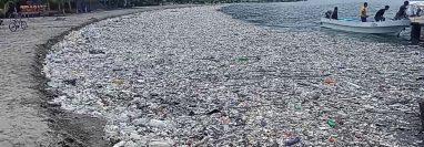 Honduras asegura que ha recogido más de 550 toneladas de basura en los últimos 11 días.