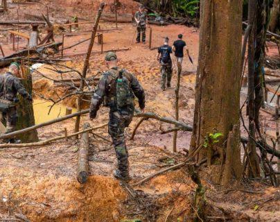 Los humanos están ocasionando la extinción de otras especies mediante la caza, la minería, la pesca excesiva y la tala de bosques.
