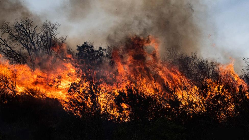 """""""10 veces el tamaño de la ciudad de Buenos Aires"""": los masivos incendios en la provincia de Córdoba que han causado un """"ecocidio"""" en Argentina"""