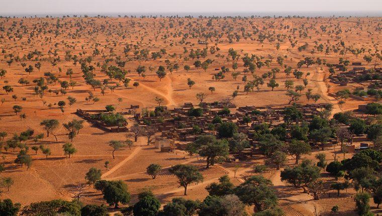 El Sahara y el Sahel tienen muchísimos más árboles de lo que se creía.