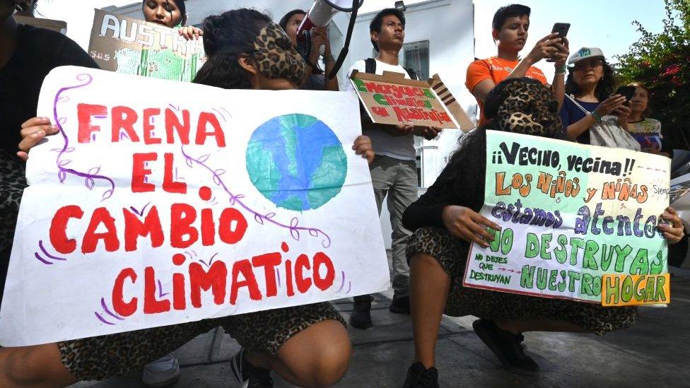 Acuerdo de Escazú: la controversia en Perú por el rechazo a ratificar el histórico pacto ambiental de América Latina y el Caribe