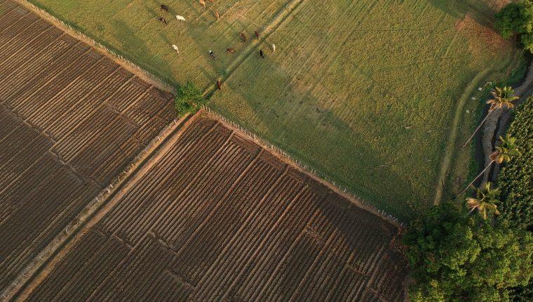 A lo largo del año, según la región y el  tipo de cultivo se pueden observar campos recién arados, listos para la siembra. Al caer la lluvia se percibe ese aroma tan esperanzador que llena de vida.  (Foto Prensa Libre: Carlos Hernández)