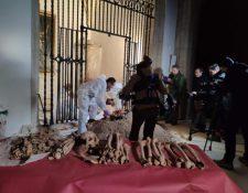 Los restos de Cristóbal Colón fueron exhumados en 2003 del sepulcro de la catedral de Sevilla, España. (Foto Prensa Libre: Universidad de Granada)