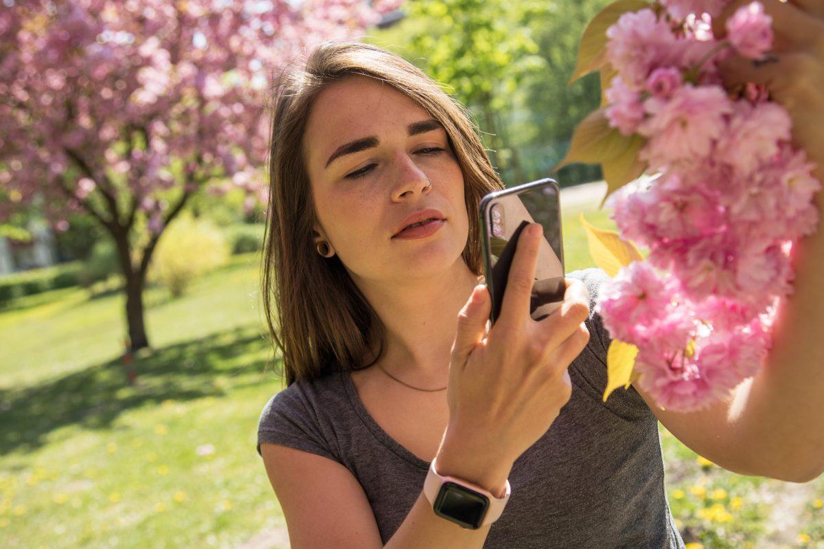 Escaneo y digitalización: la cámara del smartphone hace más que fotos