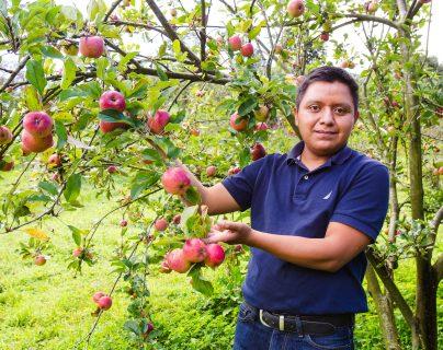 Un emprendimiento que floreció de una semilla y vio crecer sus frutos