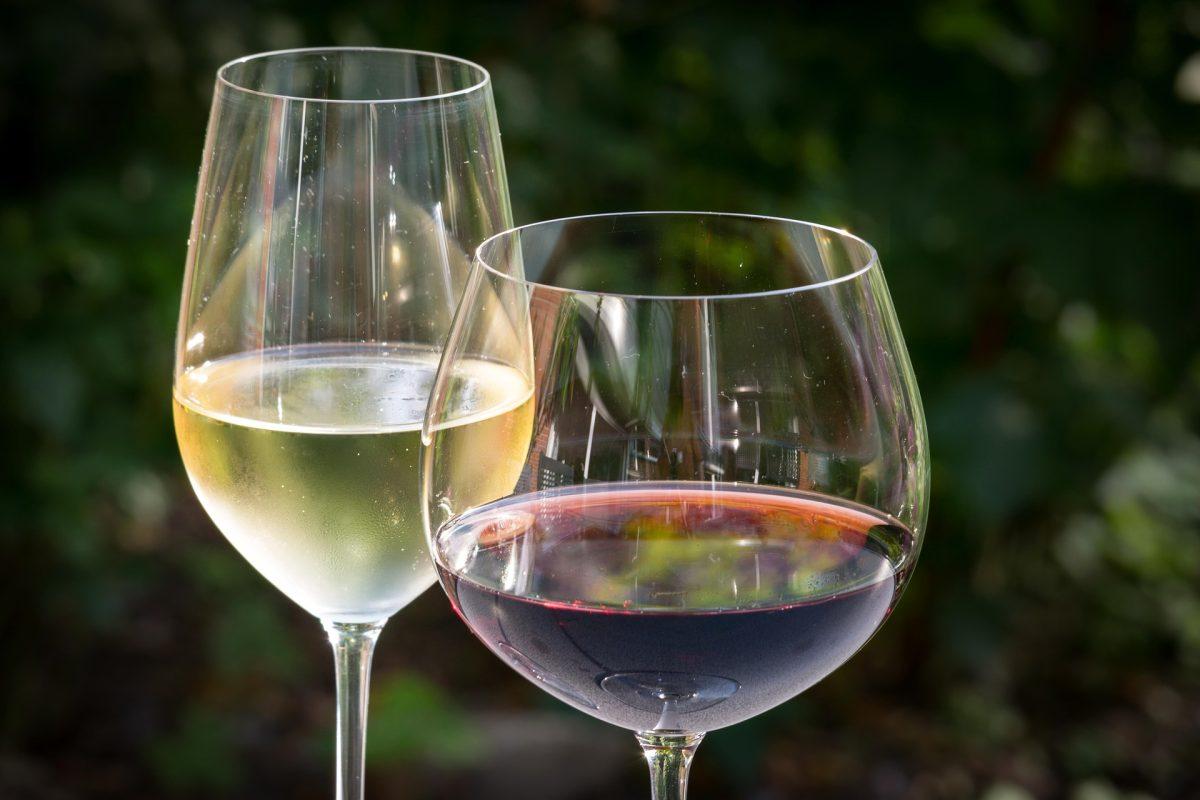 """""""La clave del vino para maridar el fiambre es la acidez"""""""