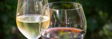 vinos para maridar el fiambre