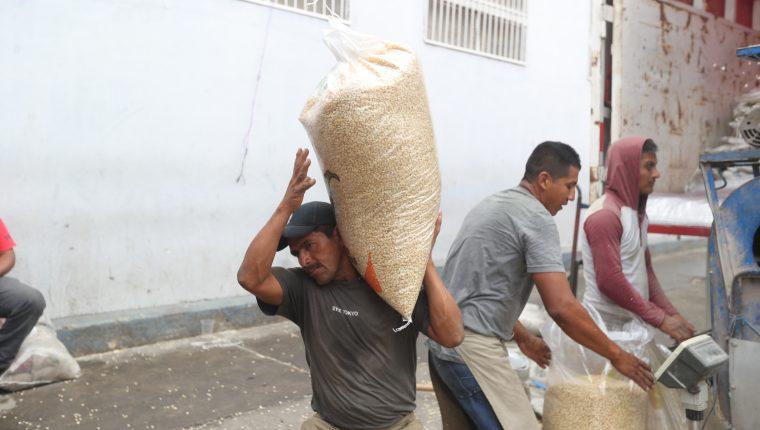 El maíz es el principal cultivo en Guatemala tanto en superficie como en cosecha, reveló la Encuesta Nacional Agropecuaria 2019-2020. (Foto Prensa Libre: Hemeroteca)