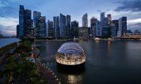 La nueva tienda esférica flotante de Apple en Singapur está construida en gran parte de vidrio y permite vistas panorámicas de 360 grados. Foto: Apple/dpa