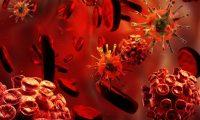 Halloween microbiológico: bacterias vampiro y otros microbios de miedo