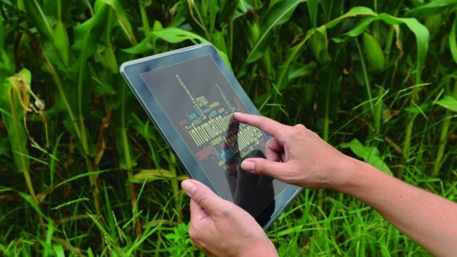 Guatemala, entre los nueve países con baja conectividad rural (y las claves para ampliar la cobertura)