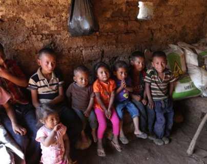 Programa Crecer Sano tiene atrasos en 13 de 14 proyectos contra la desnutrición