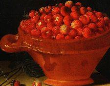 A pesar de los siglos de domesticación, las fresas europeas seguían siendo un pequeño manjar en 1711. Pero en una franja entre los Andes y el Pacífico, los indígenas llevaban casi mil años cultivándolas y engrandeciéndolas.