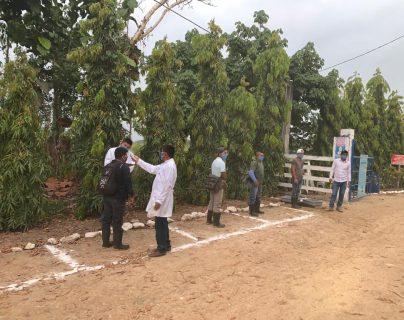 Grepalma elaboró protocolos de bioseguridad para prevenir casos de covid-19 y forma parte de su política de empresa y derechos humanos. (Foto Prensa Libre: Cortesía)