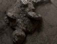 Pompeya momias