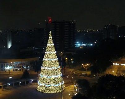 Se enciende el Árbol Gallo y anuncia la llegada de la temporada navideña