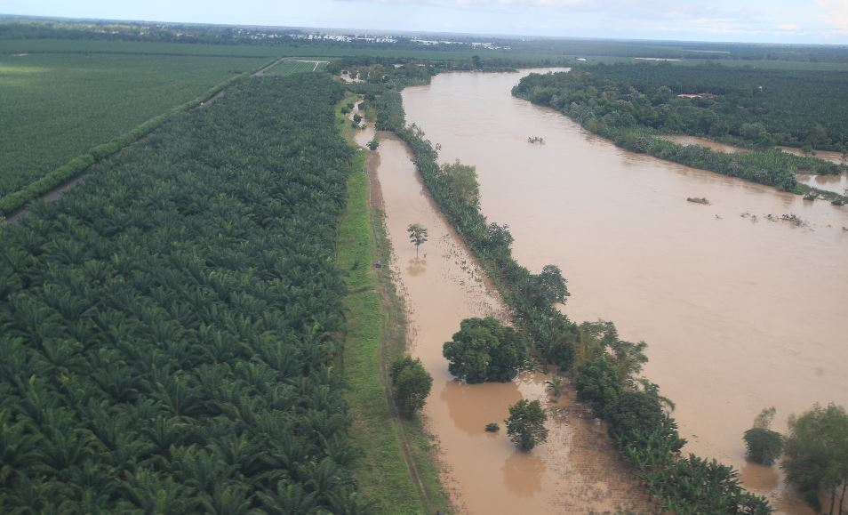 Eta: Cuándo y cómo se conocerán las cifras definitivas de daños que dejó la tormenta en el agro