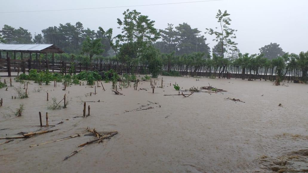 El paso de Iota dejó a 15 mil familias afectadas y 6 muertos (daños se suman a los de Eta)