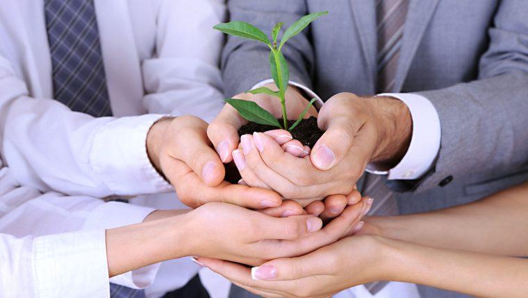 En Guatemala existen seis empresas certificadas como Sistema B. (Foto Prensa Libre: Shutterstock)