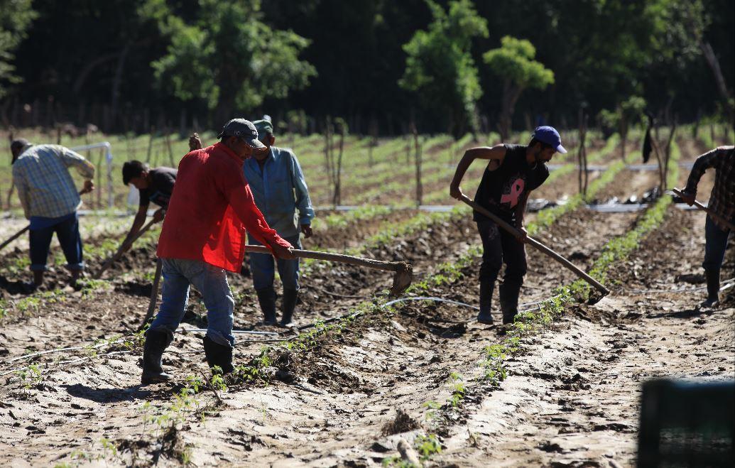 Tormentas atacaron con fuerza a municipios rurales y poco inclusivos del Corredor Seco