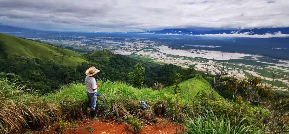 Una regla comercial y el paso de Eta e Iota ponen en jaque a arroceros guatemaltecos