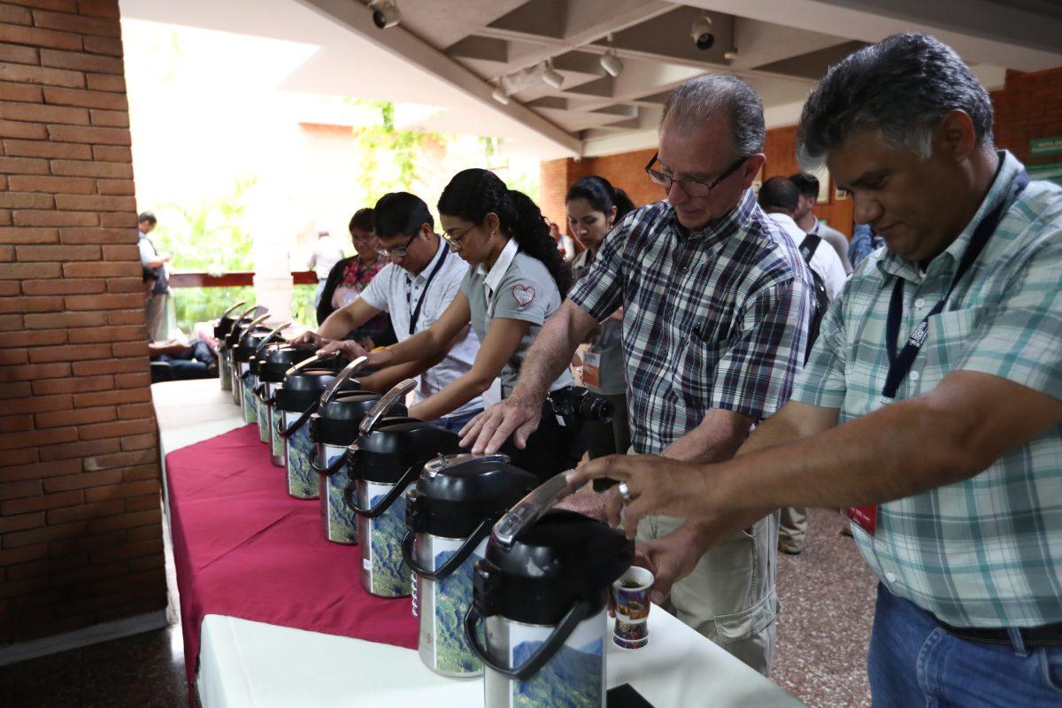 Sin intermediarios: El inesperado cambio que le trajo la pandemia a los cafetaleros guatemaltecos