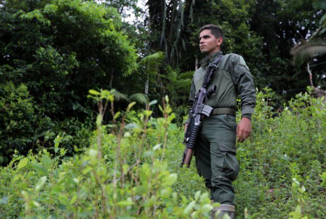 """Informe: EE.UU. necesita enfoque """"más inteligente"""" en lucha contra las drogas en Latinoamérica"""