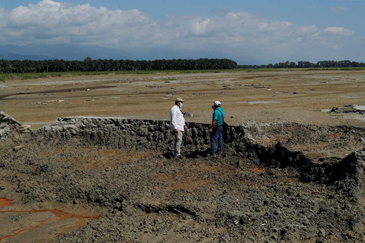 """""""Tardaremos 3 años en recuperarnos"""": El drama de los productores de arroz que lo perdieron todo por Eta e Iota"""