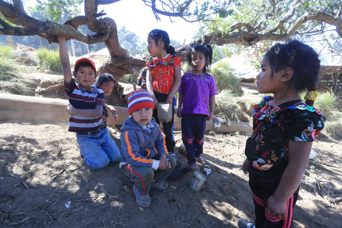 Masacre en Tamaulipas: familias esperan algo más que la repatriación de los cuerpos de sus seres queridos