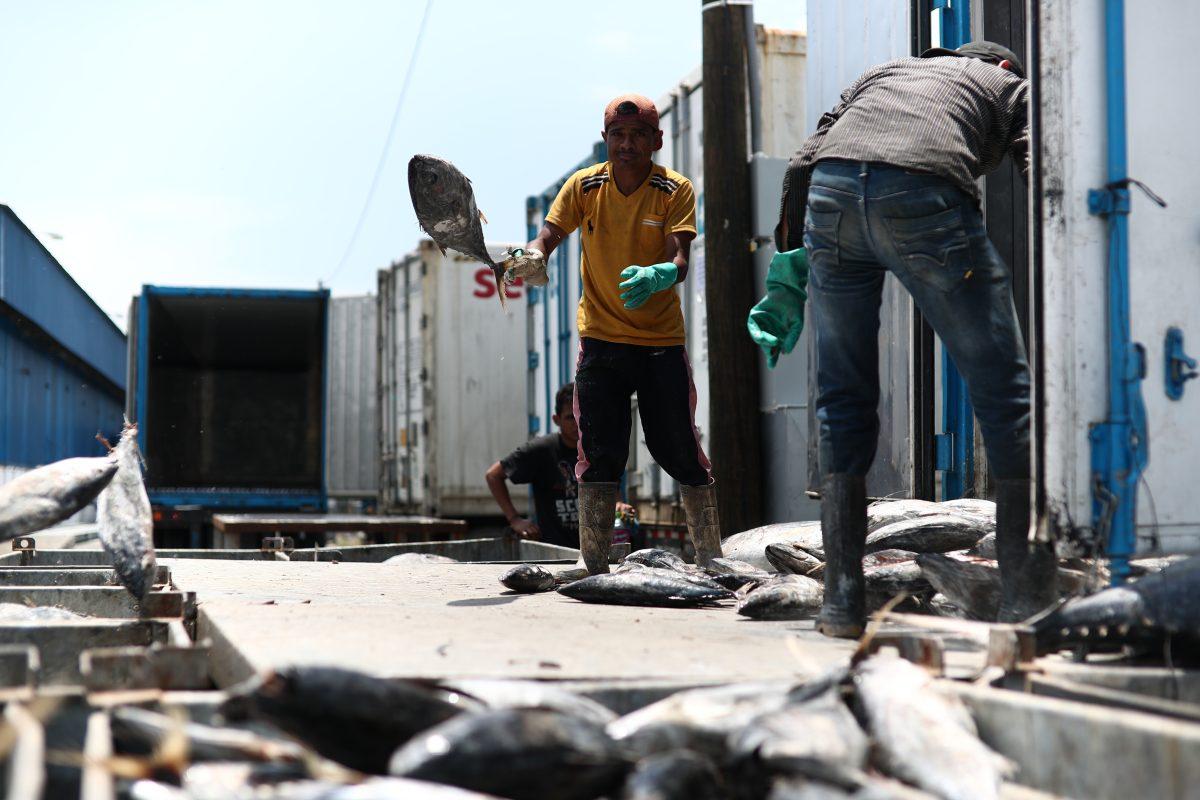 Inversiones y lucha contra el contrabando: Los primeros mensajes del gobierno de EE. UU. a Guatemala