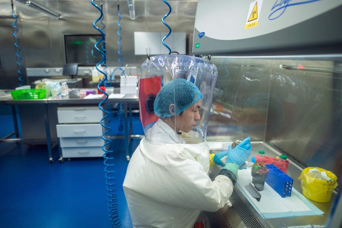 OMS dice que hipótesis más probable es que el coronavirus pasó de un animal a un humano