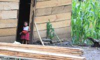 Los pobladores de la aldea Quejá se trasladaron a Chepenal, a unos 40 minutos a pie de donde sucedió el deslave. Las familias han levantado sus casas de madera y lámina para continuar con sus vidas. (Foto Prensa Libre: Juan Diego González)