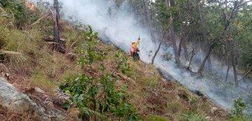 Durante febrero se incrementó el número de incendios  forestales. (Foto, Prensa Libre: Conred).