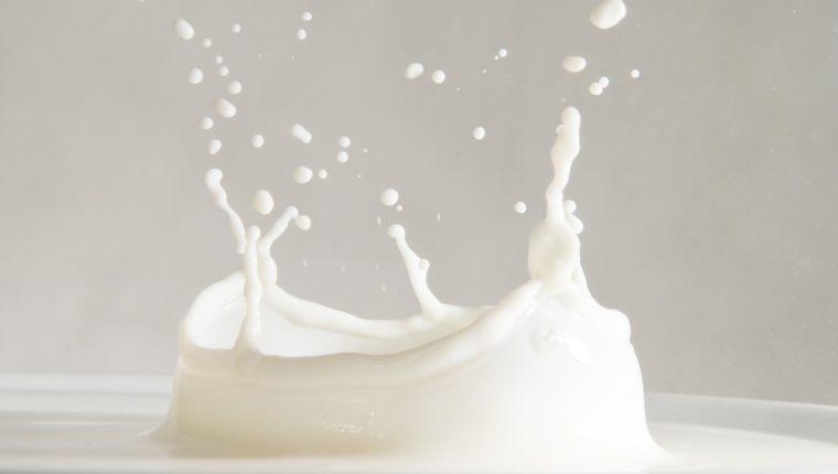leche entera o descremada ¿cual elegir?