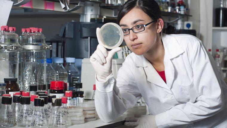 Las niñas y adolescentes necesitan conocer referentes de mujeres científicas de su época para tomar de ejemplo y luchar por lo que desean. (foto Prensa Libre: Shutterstock).