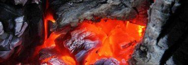 Carbón nativo