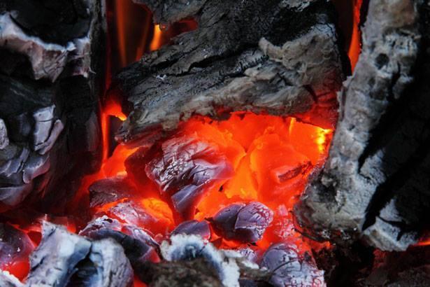 Carbón nativo, el combustible vegetal que salta del bosque a la parrilla