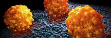 Un nuevo biomarcador podría predecir qué pacientes con cáncer de páncreas responden a la inmunoterapia con CD40