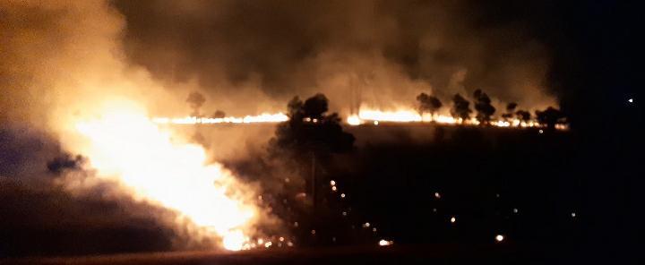 Incendio en campos municipales de Cantel. Foto: María José Longo