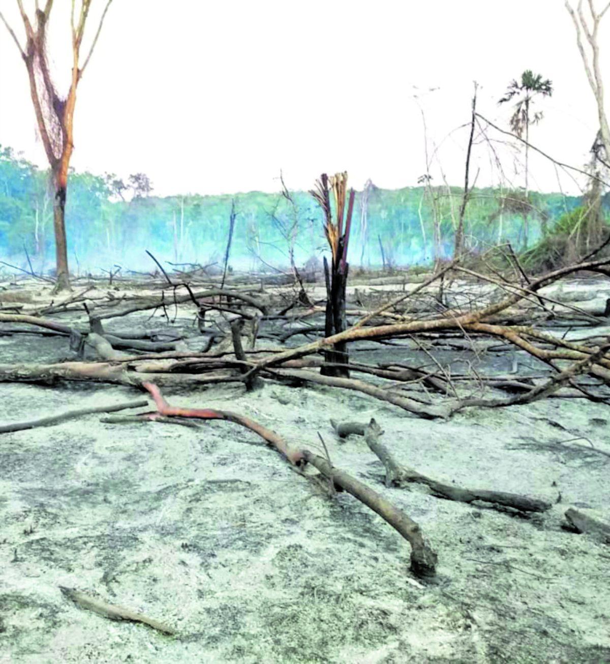 Incendios: Más de 97 hectáreas han sido consumidas por las llamas en lo que va del año