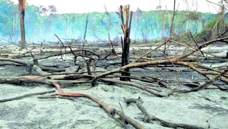 Petén fue el departamento más afectado el año pasado por los incendios forestales. En la temporada 2019-2020 las llamas consumieron 78 mil 127 hectáreas en todo el país. (Foto Prensa Libre: Hemeroteca PL)